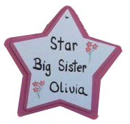 Sibling star from Stork Stopped Here Lawn Signs